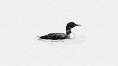 FreshPaint-loon - Copy