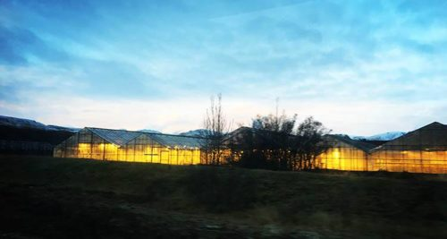 Geothermal Heated Greenhouses in Iceland. Source: BTL Liners.
