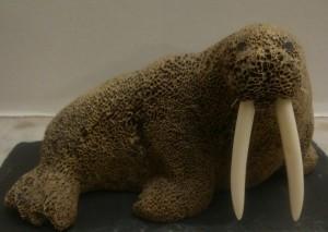 Walrus carved from whalebone by Kotzebue artist: Adolph Shagowak. c. ajh