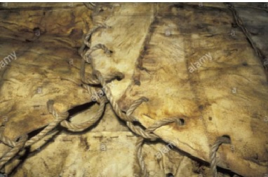 The blanket is made of walrus hide sewn together with sinews. Source: Alamy