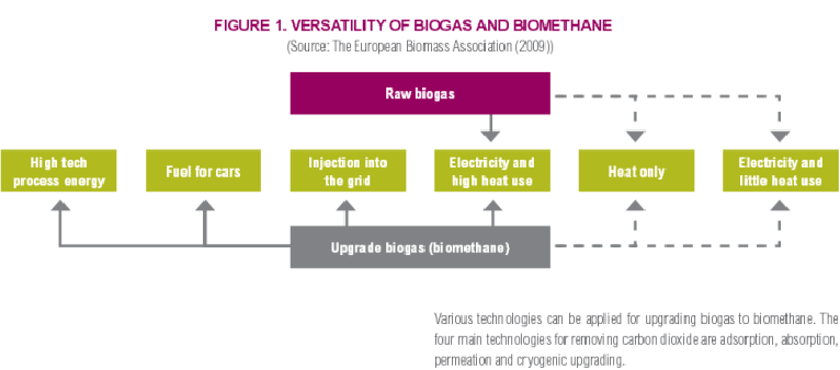 The system can also be upgraded to transform the biomass to biomethane producing higer grade electricity, fuel for cars and high tech process energy. Source: European Biomass Association.