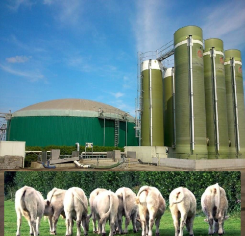 Mess, manure, and anaerobic digesters