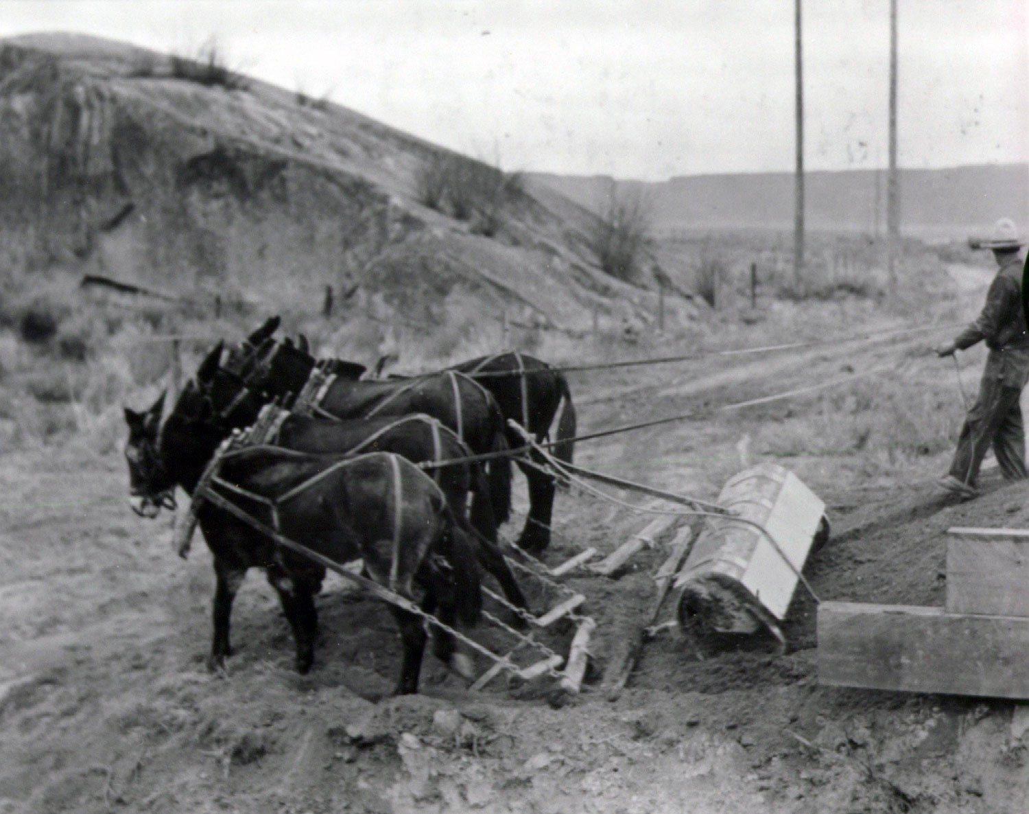 Circa 1935. Preparing bed with mules for laying ties for railroad. Source: US Bureau of Reclamation: managing water in the west.