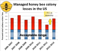 Honey Bee Colony losses in the US 2006-2013. Source: www.beeinformed.org