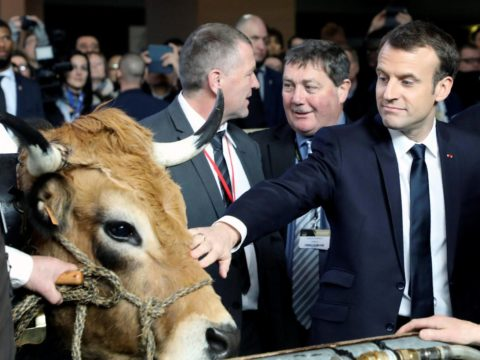 President Macron today at France's international agricultural salon
