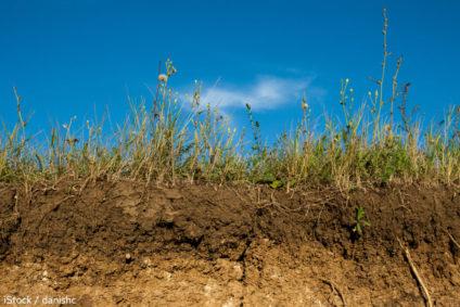 Les agriculteurs à la rescousse: les énergies renouvelables en France