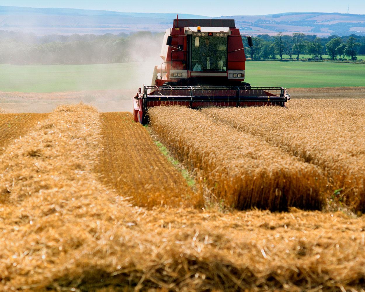 AgricultureFrance