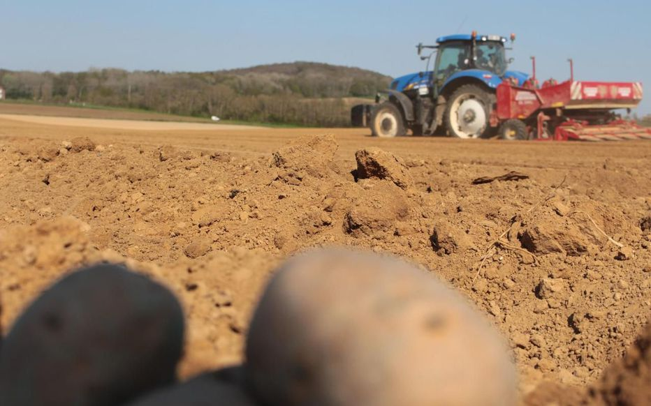 It has been reported that more than ten thousand hectares of farm land have been illegally sublet to foreign farmers in the northern region of Les Hauts-de-France.  Source: Le Parisien/Juliette Duclos